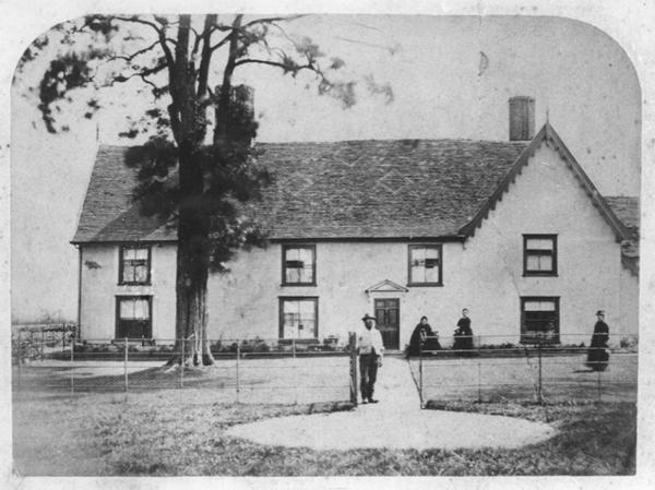 Clipt Bushes 1877